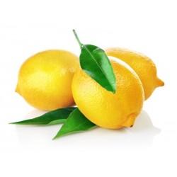 Organic lemons – Variety Femminello Zagara Bianca