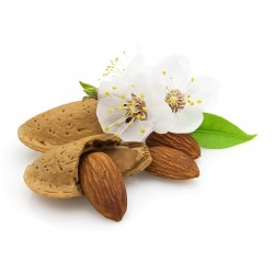 "Organic almonds with the shell variety ""Tuono"""